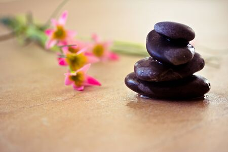 a shot of black stones and pink flower to depict wellness and beauty  Stock Photo - 10866829