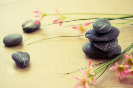 depict: a shot of black stones and pink flower to depict wellness and beauty  Stock Photo
