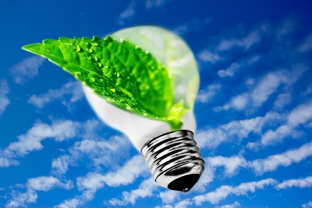 ecology: metaphor of leaf inside lightbulb