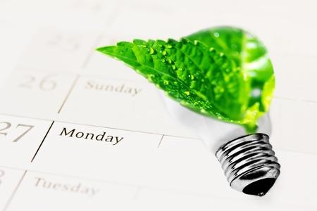 ecology: metaphor of leaf inside lightbulb photo