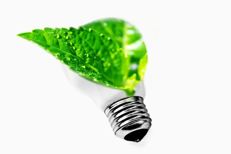 ecology: metaphor of leaf inside lightbulb