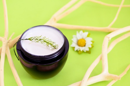 concept of organic cosmetics, beauty product with flower and branches photo
