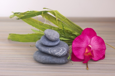 objects for spa massage and aromatherapy Stock Photo - 15995875