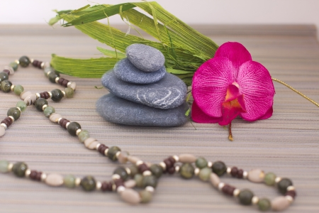 objects for spa massage and aromatherapy Stock Photo - 15995796