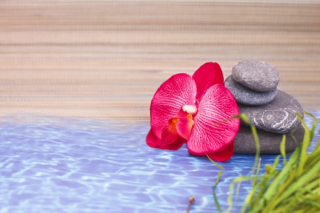 objects for spa massage and aromatherapy Stock Photo - 15995881