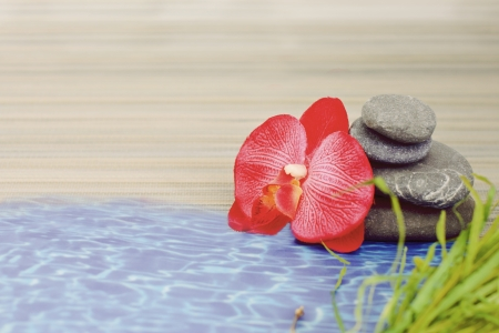 objects for spa massage and aromatherapy Stock Photo - 15995788