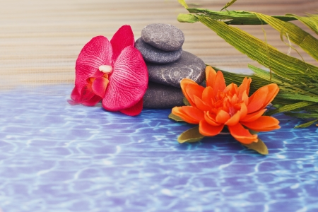 objects for spa massage and aromatherapy Stock Photo - 15995882