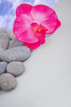 pink orchid and massage stones photo