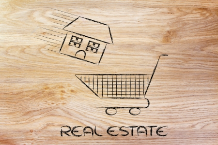 house launched inside shopping cart, concept of buying or moving house photo