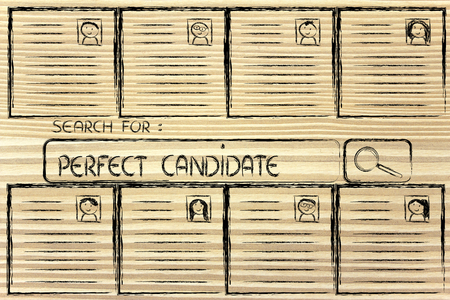 cv: CV selection and search bar, resumes of different people