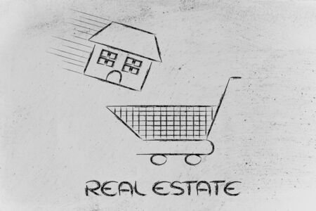 building sector: house launched inside shopping cart, concept of buying or moving house