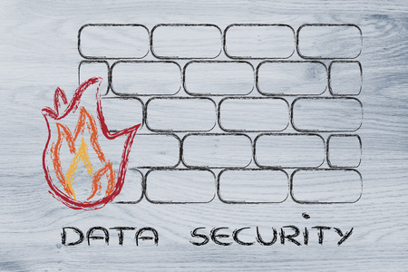 sensitive: conceptual design with firewall and security of data on the web