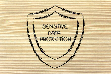 sensitive: conceptual design of a shield for the security of data and personal information