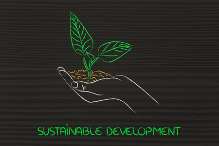 green economy and sustainability: hand holding small plant with newborn leaves
