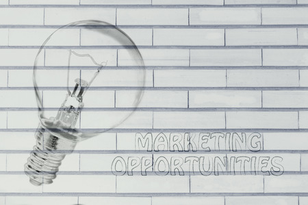 brilliant ideas: brilliant ideas and marketing opportunities, illustration with real lightbulb Stock Photo