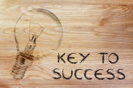 brilliant ideas: brilliant ideas for success, illustration with real lightbulb Stock Photo
