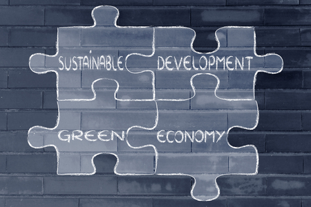 social behaviour: elements of ecology as pieces of puzzle: sustainable development and green economy