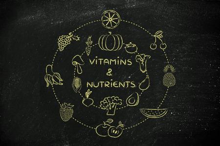 nutrientes: vitaminas y nutrientes: Ilustraci�n sobre el consumo de productos naturales como verduras