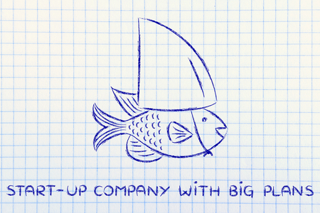 start-up with big plans: small fish pretending to be a shark