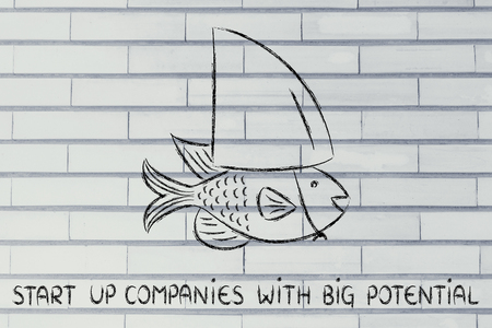 start-up with big potenial: small fish pretending to be a shark