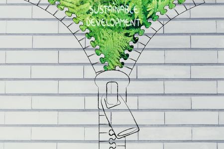 desarrollo sustentable: concepto de desarrollo sostenible: Ilustración de la postal que revela un helecho sale del fondo