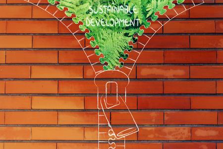 desarrollo sostenible: concepto de desarrollo sostenible: Ilustración de la postal que revela un helecho sale del fondo