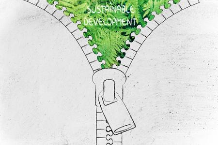 desarrollo sustentable: concepto de desarrollo sostenible: Ilustraci�n de la postal que revela un helecho sale del fondo