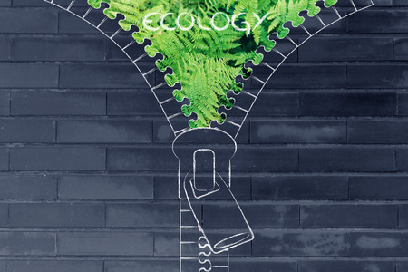 social behaviour: concept of ecology: illustration of zip revealing a fern leaves background