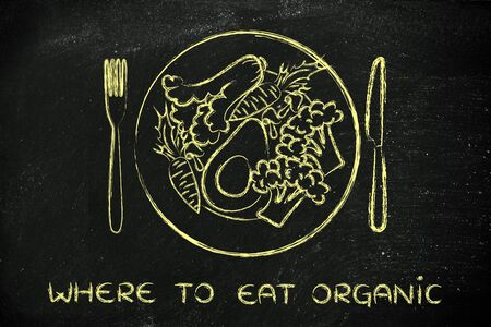 where to eat: where to eat organic: illustration with healthy plate of vegetables