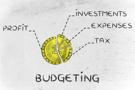 budgeting: budgeting: golden coin split into slices with financial elements Stock Photo