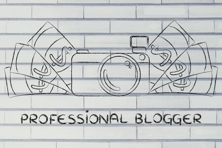 licence: being a professional blogger: illustration of a funny camera with cash