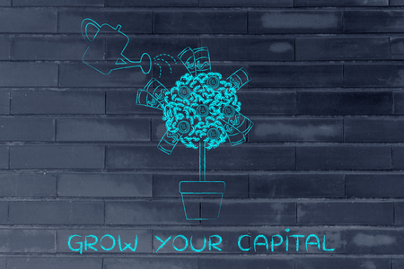 capital gains: grow your capital: tree with banknotes and coins between the leaves and water can Stock Photo