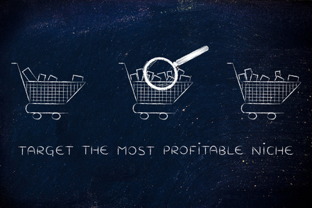 amounts: target the most profitable niche: magnifying glass analyzing shopping carts with different amounts of products inside (semi-empty to full)