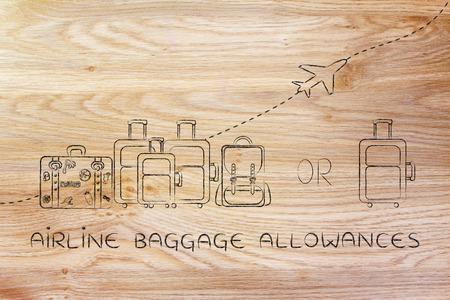 alumnos en clase: subsidios de equipaje de avión: ilustración de un grupo de equipaje y un pequeño bolso, con el aeroplano volando detrás de ellos