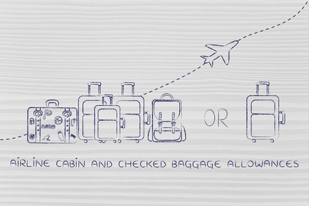 alumnos en clase: airline cabin and checked baggage allowances: illustration of a group of luggage and a single small bag, with airplane flying away behind them