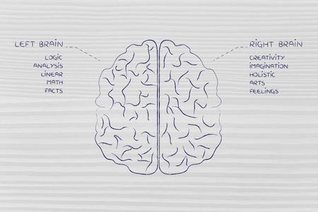 brain function: flat illustration of a brain with left and right caption and detailed function descriptions