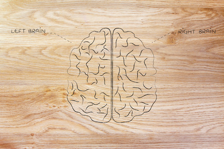 objectivity: flat illustration of a brain with left and right caption
