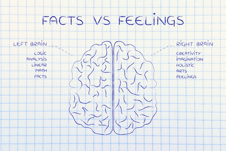 objectivity: facts vs feelings: flat illustration of a brain with left and right caption and detailed function descriptions