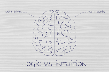 objectivity: logic vs intuition: flat illustration of a brain with left and right caption