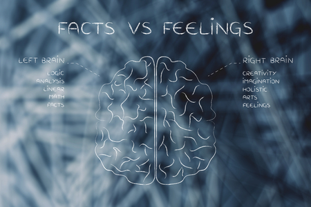 brain function: facts vs feelings: flat illustration of a brain with left and right caption and detailed function descriptions