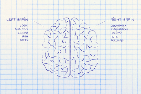 objectivity: flat illustration of a brain with left and right caption and detailed function descriptions