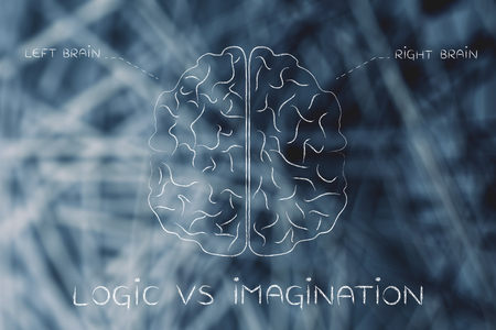 objectivity: logic vs imagination: flat illustration of a brain with left and right caption