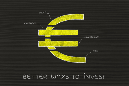 profiting: better ways to invest: euro currency symbol split into 4 parts with captions investment, profit, expenses and tax