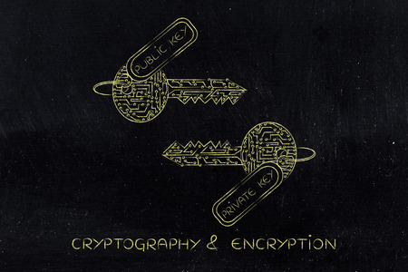 algorithms: encryption algorithms and cryptography concepts: matching keys made of electronic microchip circuits with tag private and public Stock Photo