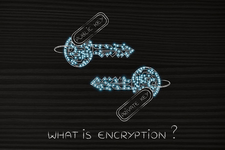 algorithms: encryption algorithms and cryptography concepts: matching keys made of electronic microchip circuits with tag private and public and led lights