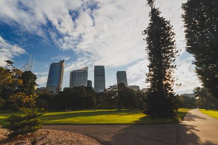 SYDNEY, AUSTRALIA - July 13th, 2013: view of the Royal Botanic Gardens in Sydney CBD