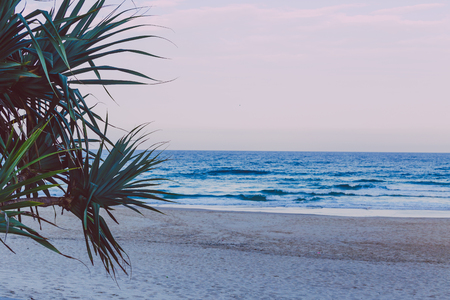 the beach and landscape in Surfers Paradise on the Gold Coast, a popular destination in Queensland Stock Photo
