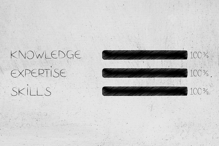 knowledge expertise and skills conceptual illustration: bars with 100 per cent covered Stockfoto
