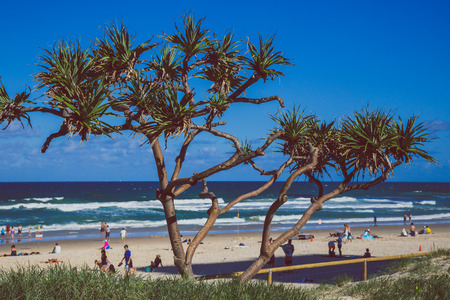 GOLD COAST, AUSTRALIA - January 6th, 2015: view of Surfers Paradise beach from the main seaside walk