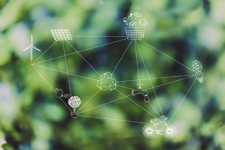 Ecosystem conceptual illustration: network of ecology-related symbols link by dashed lines
